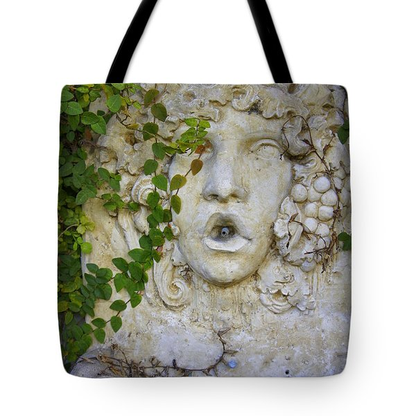 Forgotten Garden Tote Bag by Laurie Perry