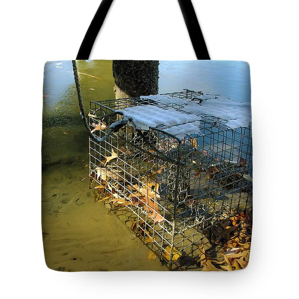Forgotten In Winter Tote Bag by Brian Wallace