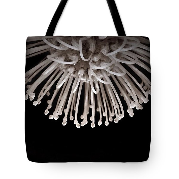 Tote Bag featuring the photograph Formation by Susan Maxwell Schmidt