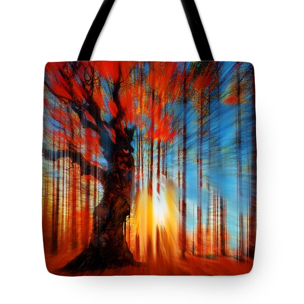 Forrest And Light Tote Bag by Tony Rubino