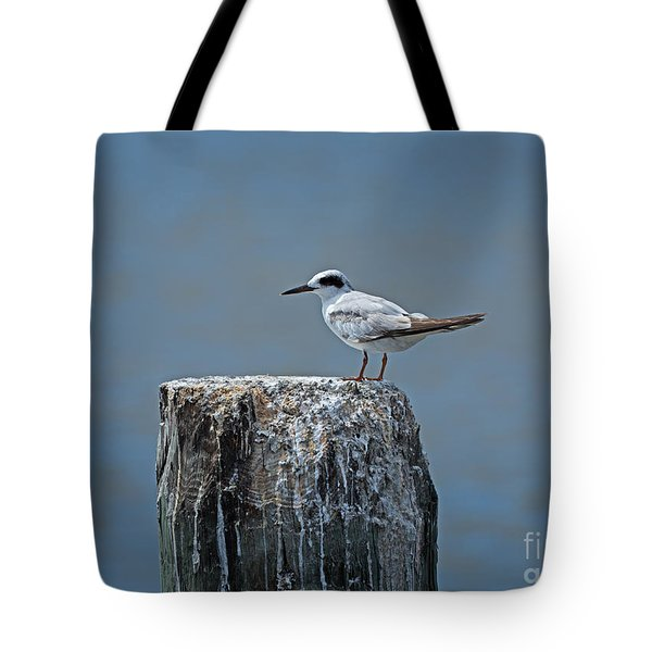 Forster's Tern Tote Bag by Louise Heusinkveld