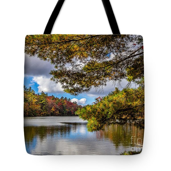 Tote Bag featuring the photograph Fort Mountain State Park by Bernd Laeschke