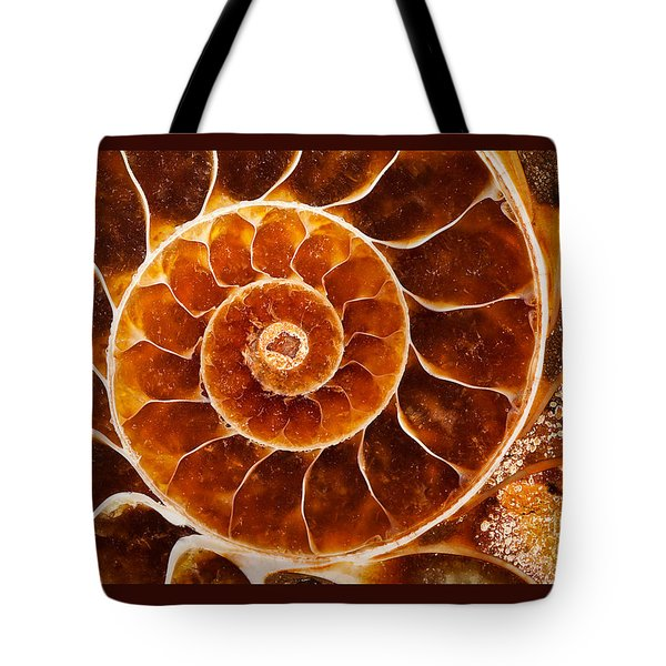Fossil Nautilus Tote Bag by Alice Cahill