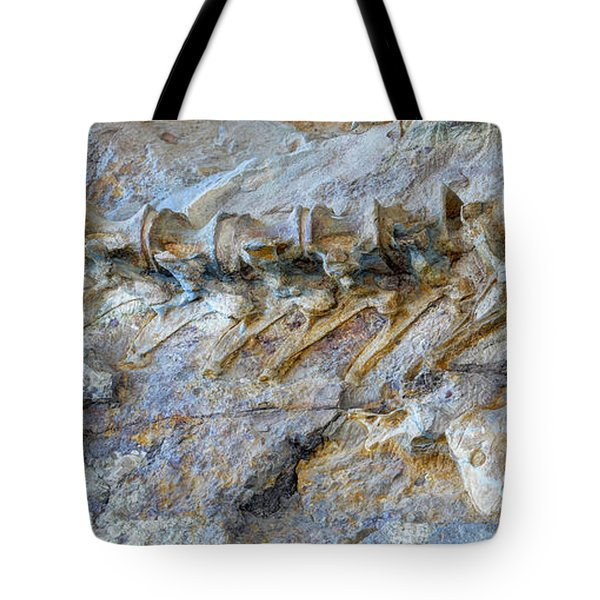 Fossilized Dinosaur Backbone - Dinosaur National National Monument Tote Bag