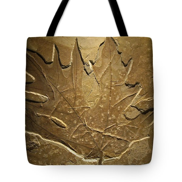 Fossilized Maple Leaf Tote Bag by Connie Fox