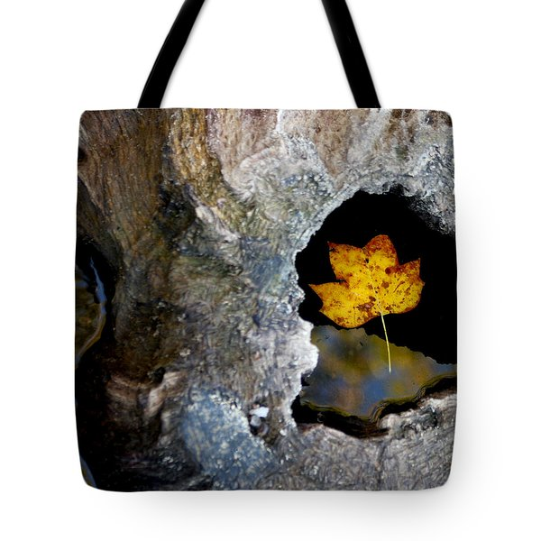 Found A Home Tote Bag by Art Block Collections