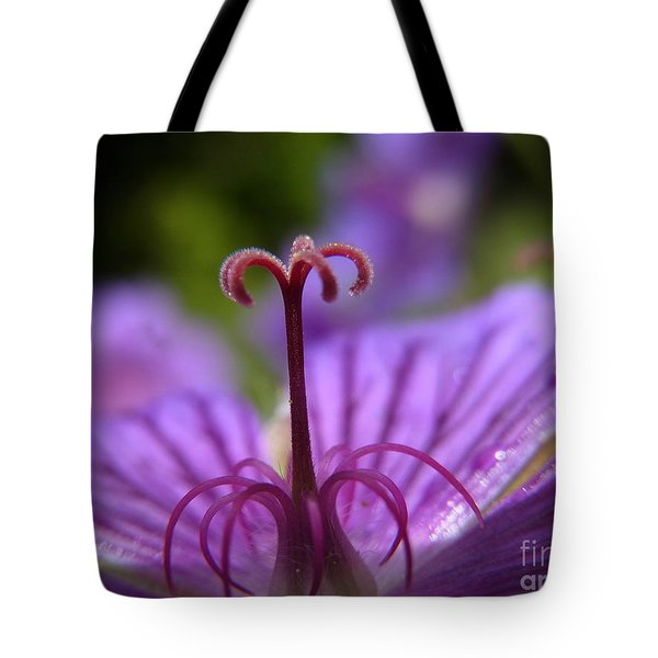 Fountain Of Joy Tote Bag by Agnieszka Ledwon