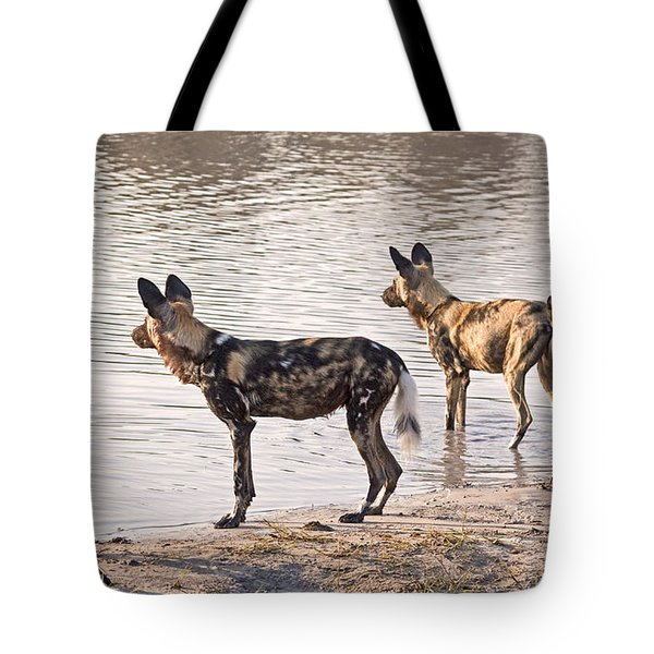 Tote Bag featuring the photograph Four Alert African Wild Dogs by Liz Leyden