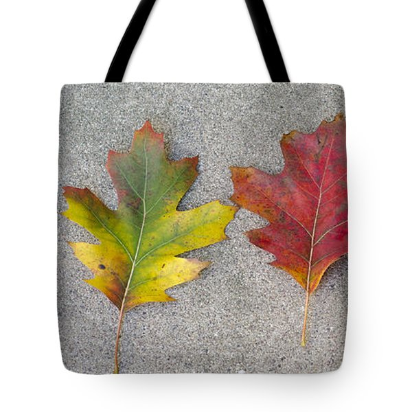 Four Autumn Leaves Tote Bag