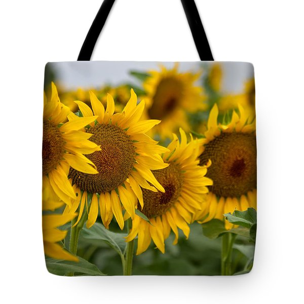 Four Tote Bag by Ronda Kimbrow