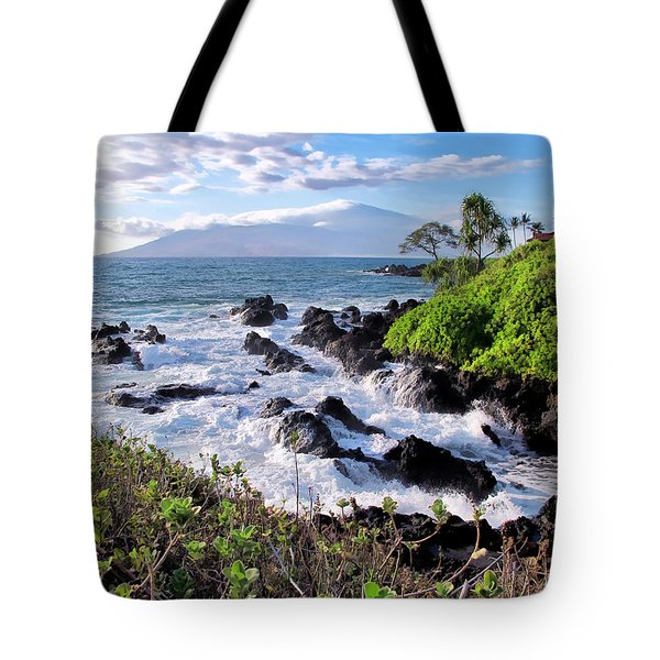 Four Seasons 117 Tote Bag