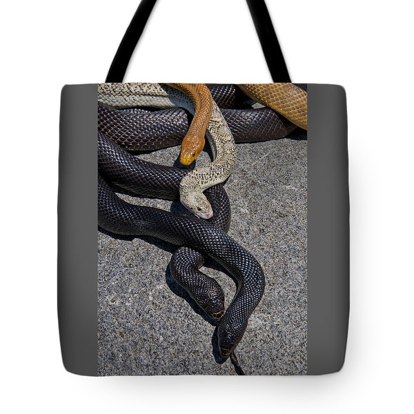 Four Snakes Tote Bag