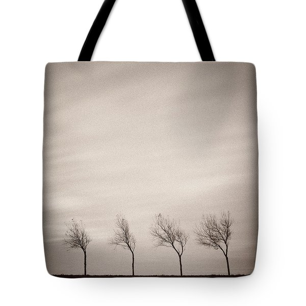 Four Trees Tote Bag by Dave Bowman