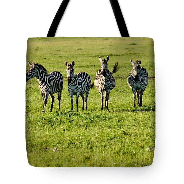 Four Zebras Tote Bag