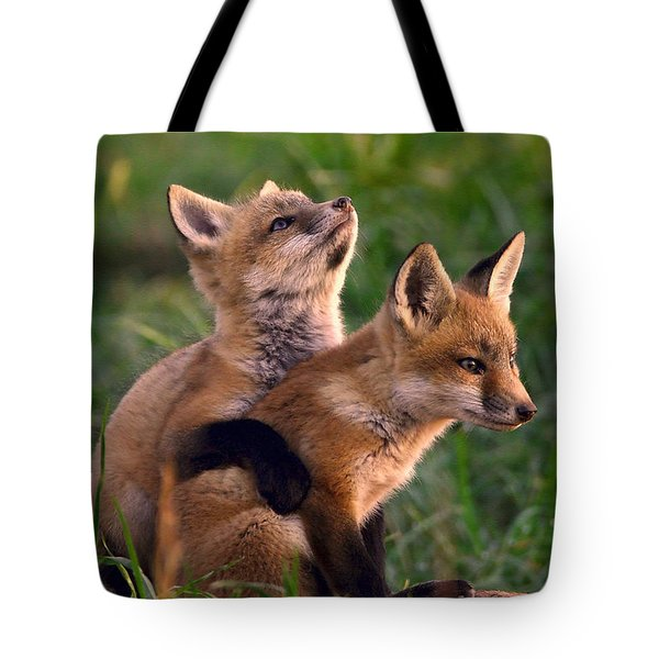 Fox Cub Buddies Tote Bag