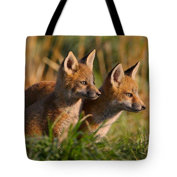 Fox Cubs At Sunrise Tote Bag