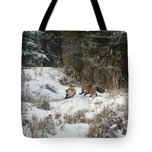 Fox Hollow Tote Bag by Jack Bell