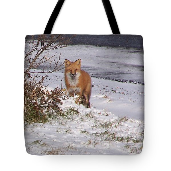 Fox In My Yard Tote Bag