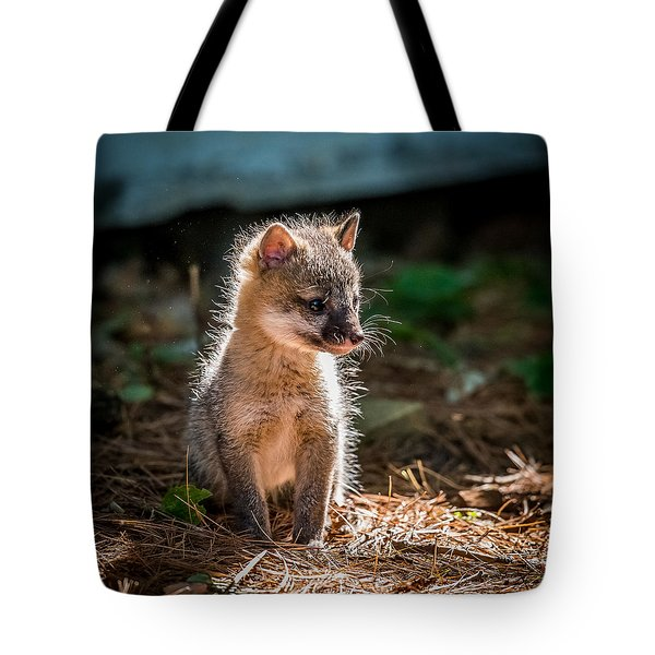 Fox Kit Tote Bag by Paul Freidlund