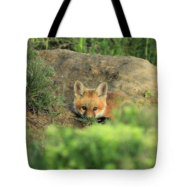 Fox Kit V Tote Bag