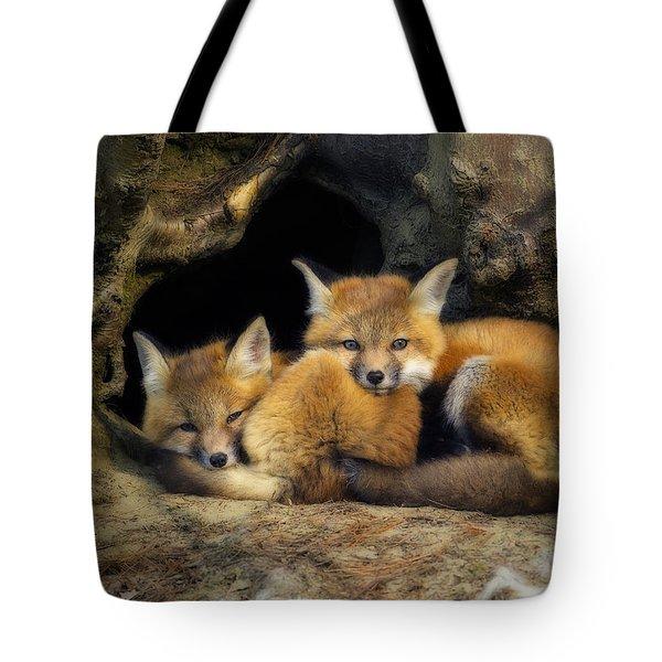 Best Friends - Fox Kits At Rest Tote Bag