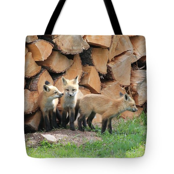 Fox Kits Tote Bag