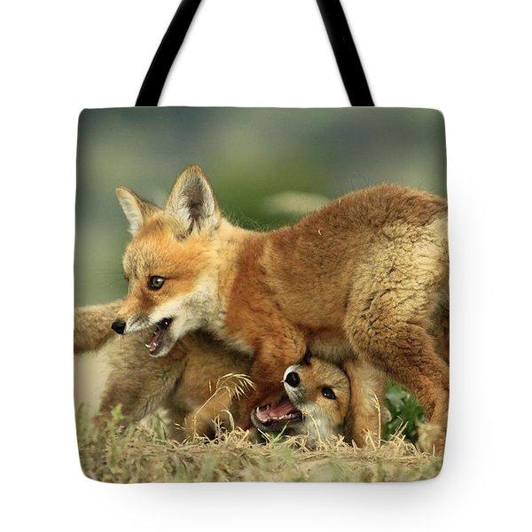 Fox Kits Tote Bag