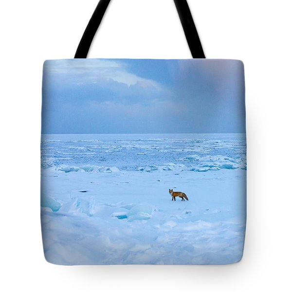 Fox Of The North Country Iv Tote Bag by Mary Amerman
