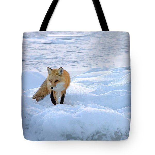 Fox Of The North II Tote Bag