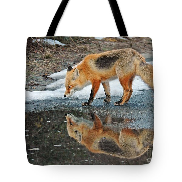 Fox Reflection Tote Bag by Sami Martin