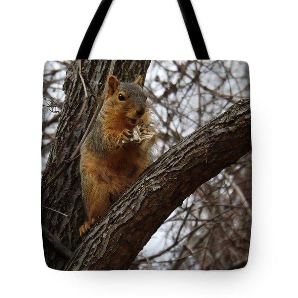 Fox Squirrel 1 Tote Bag by Sara  Raber