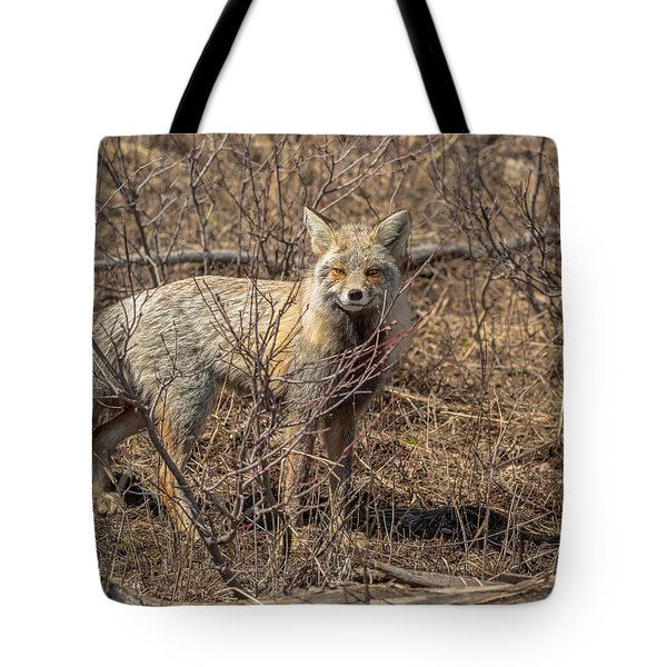 Tote Bag featuring the photograph Foxy In Disguise by Yeates Photography