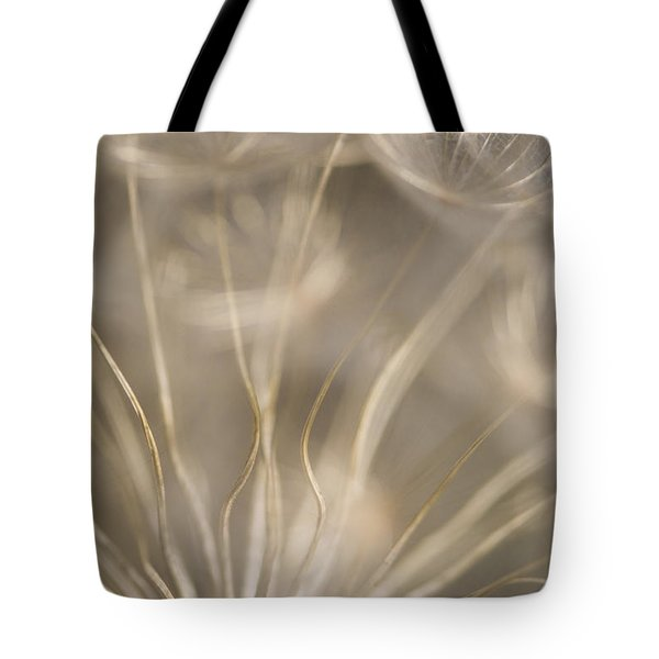 Fragile Tote Bag by Anne Gilbert