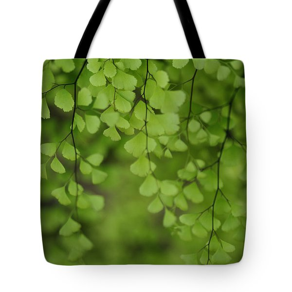 Tote Bag featuring the photograph Fragile by Linda Shafer