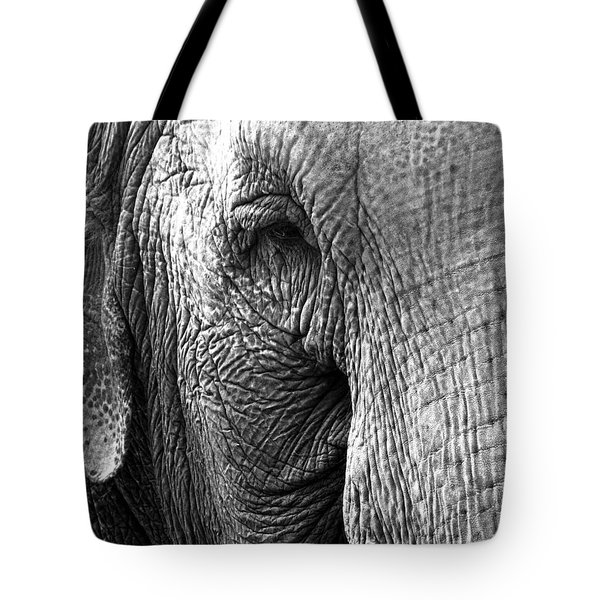 Fragility  To Forget  Tote Bag