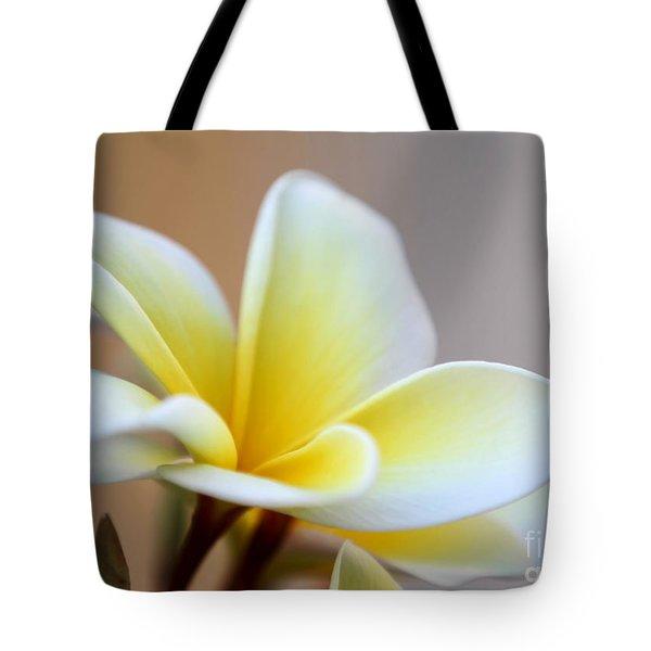 Fragrant Frangipani Flower Tote Bag by Sabrina L Ryan