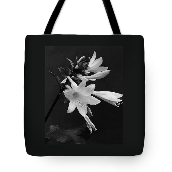 Fragrant Plantain Lily Tote Bag