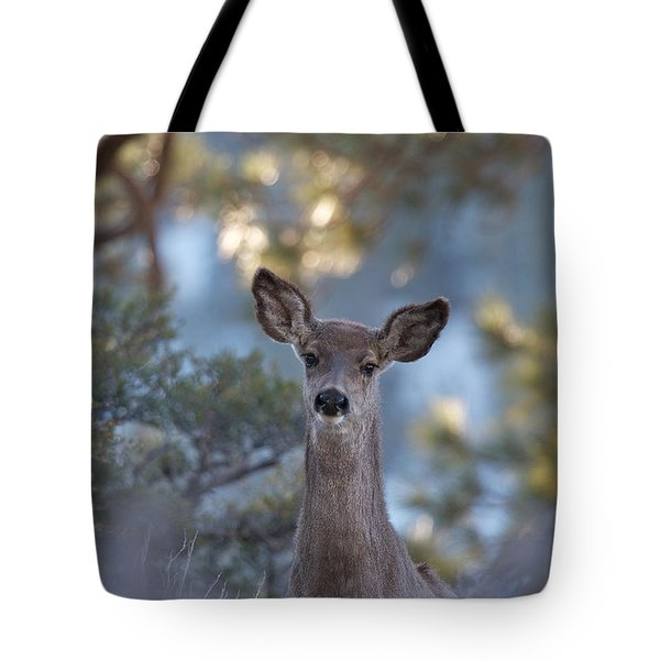 Framed Deer Head And Shoulders Tote Bag