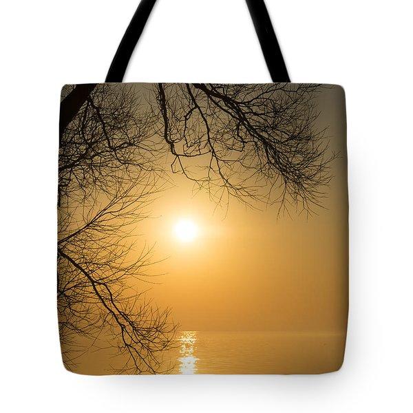 Framing The Golden Sun Tote Bag by Georgia Mizuleva