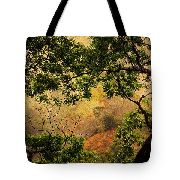 Framing Tree Branches Tote Bag by Jenny Rainbow