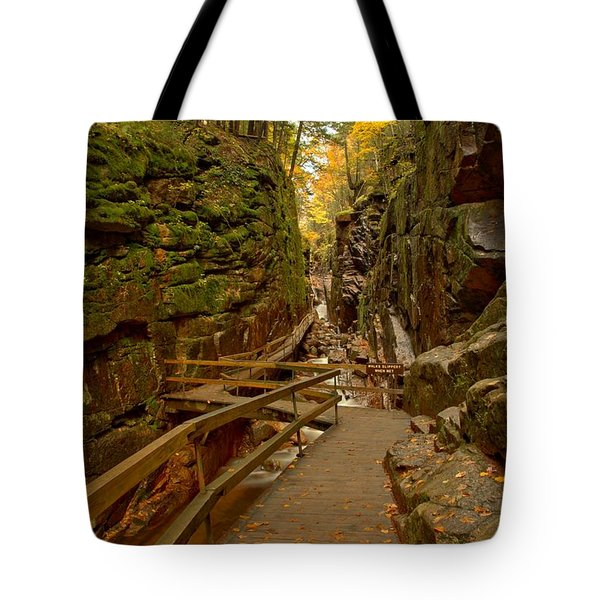 Franconia Notch Flume Gorge Boardwalk Tote Bag