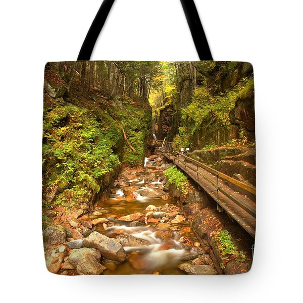 Franconia Notch Flume Gorge New Hampshire Tote Bag