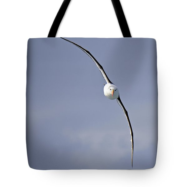 Free To Follow Tote Bag by Tony Beck