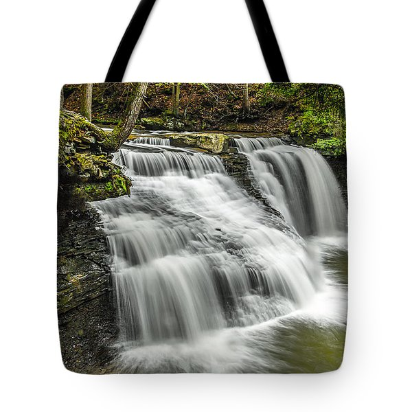 Freedom Falls Tote Bag