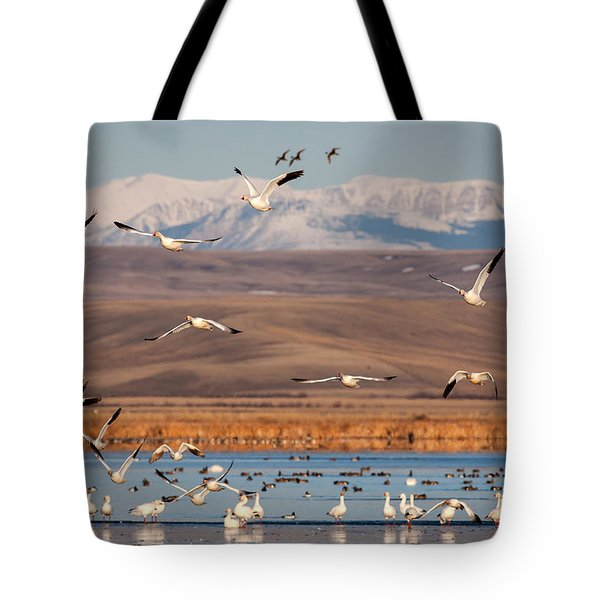 Tote Bag featuring the photograph Freeze Out Lake Morning by Jack Bell