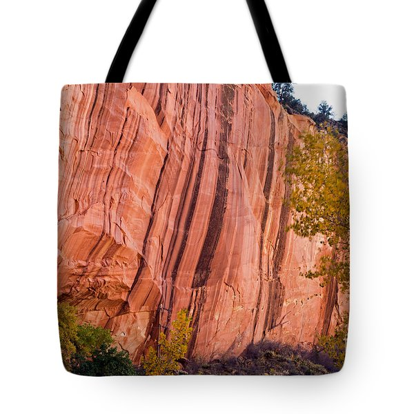 Fremont River Cliffs Capitol Reef National Park Tote Bag