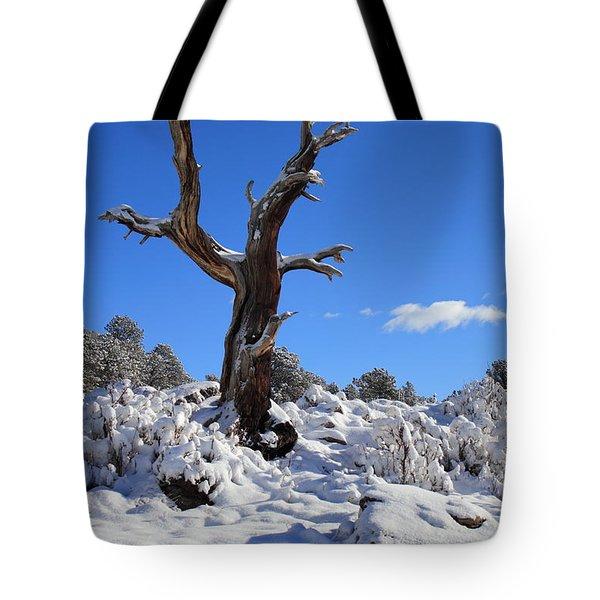 Fresh Blanket Of Snow Tote Bag