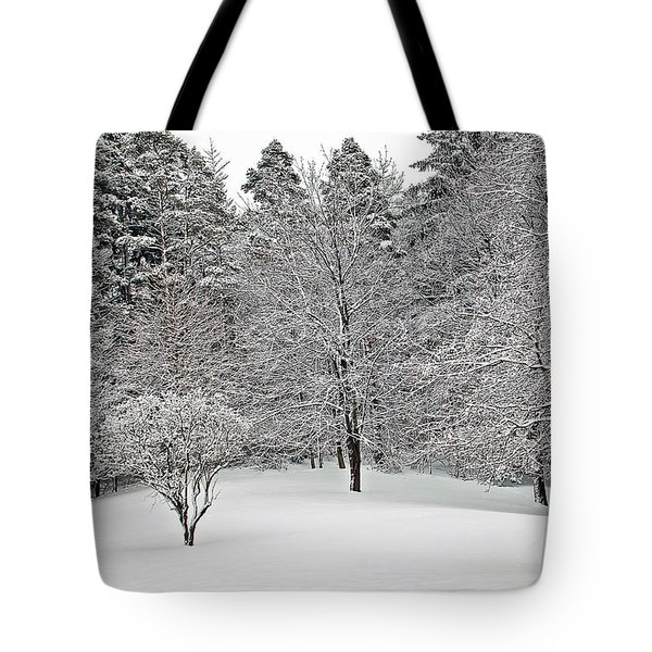 Fresh Snow Scene Tote Bag by Aimee L Maher Photography and Art Visit ALMGallerydotcom