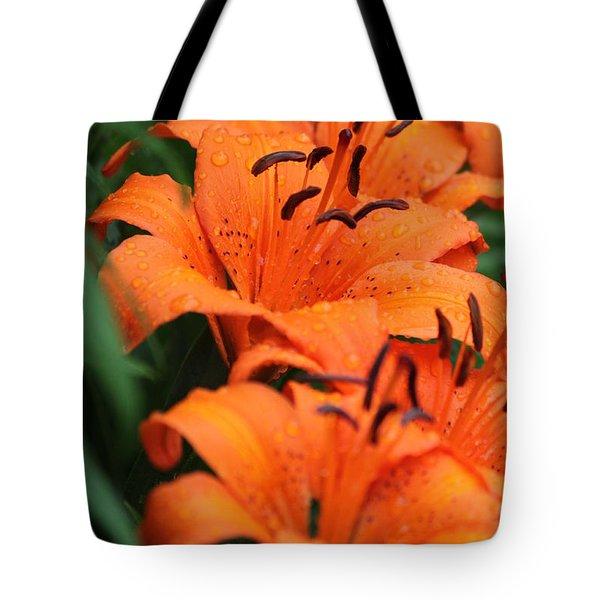 Freshly Showered Tiger Lilys Tote Bag