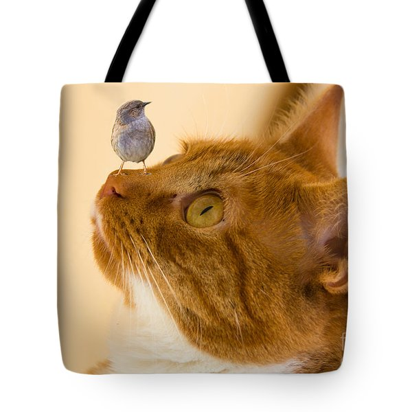 Friend Or Foe Tote Bag